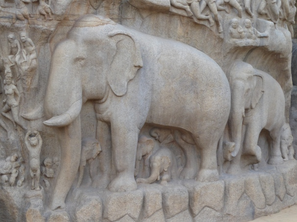 elephantstn